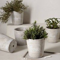 Chalkboard Herb Planters by Anthropologie Grey Set Of 5 Garden