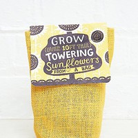 Urban Grow Towering Sunflowers Grow in a Bag - Urban Outfitters