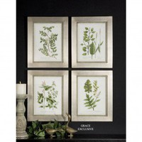Uttermost Botanical Collection Wall Art (Set of 4) - 41292 - All Wall Art - Wall Art & Coverings - Decor