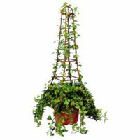 One Kings Lane - Gifts for the Host - Ivy Rustica Eiffel Tower