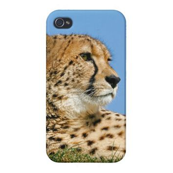 Cheetah iPhone 4/4s case