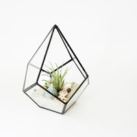 Geometric Terrarium Pod, Air Plant Glass Terrarium, Glass Planter