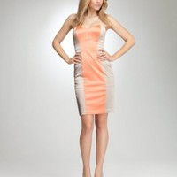 Tara Strapless Colorblock Panel Dress