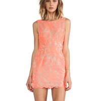 Farrow Lace Dress in Neon Pink
