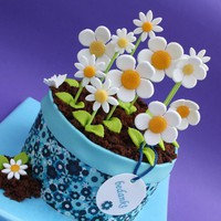 Flower pot - Other Cakes by leonietje1 on CakeCentral.com