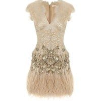 Ostrich Feather and Sequin Embellished Lace Dress- Evening Dresses - Matthew Williamson