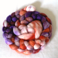 Handpainted Superwash Merino Roving Sorbet 4oz by TailsandSnouts
