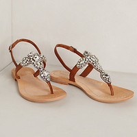 Allegretto Beaded Sandals