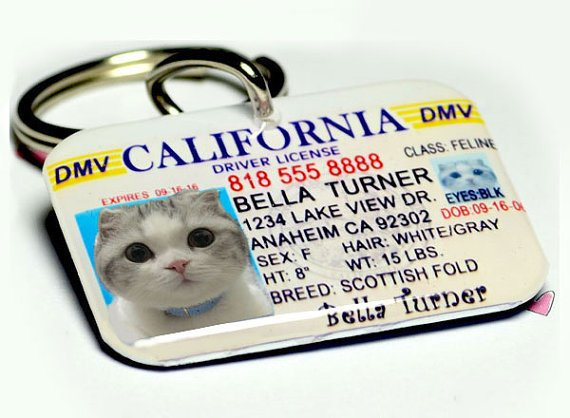 Pet ID Tags California Driver License for dogs or cats by ID4Pet