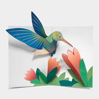 Pop-Up Hummingbird Note Card Set
