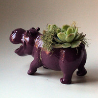 Plum Purple Hippopotamus Planter  Mini Modern Art by CoastalMoss