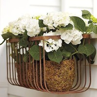 Wall-Mount Iron Planter | Pottery Barn