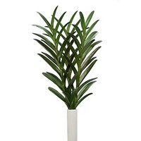 Vanda Leaf - Set of 3 | Stemmed Floral | Botanicals & Plants | Accessories | Decor | Z Gallerie