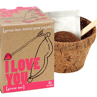 GROW ME: I LOVE YOU PLANT KIT