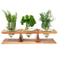 Window Sill Herb Holder