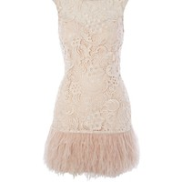 Lipsy V I P Waxed Lace Feather Dress - Lipsy