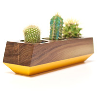 Boxcar Single Planter- Walnut and Orange