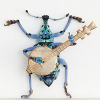 Beetle Playing Banjo Insect Art Diorama by BugUnderGlass on Etsy
