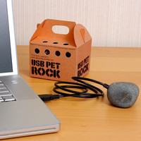ThinkGeek :: USB Pet Rock
