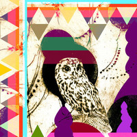 lunch box 2 (bird remix 2012) Art Print | Print Shop