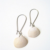 Seashell Earrings  Calusa Collection Natural by VintageOoakDesigns
