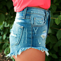High Regards High Rise Shorts