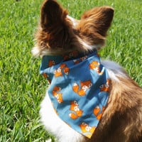 Fox Dog Bandanna