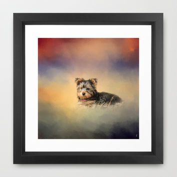 Loving the Leaves - Yorkshire Terrier Puppy Framed Art Print by Jai Johnson