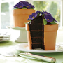 Perfect Endings Blooming Flower Pot Cake $100