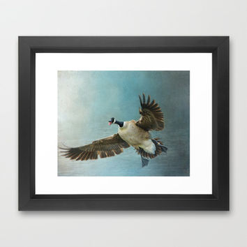 Wait For Me - Goose in Flight Framed Art Print by Jai Johnson