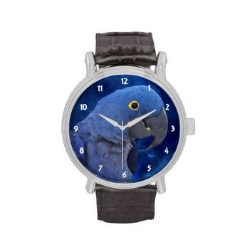 Hyacinth Macaw Blue Vintage Leather Strap Watch