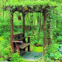 Arbor with Bench  Favorite backyard projects: Raised beds, benches, cabanas, p