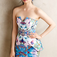 Florascope Peplum Dress