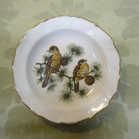 Vintage Merrie England bone china pin dish with scalloped gilt edge depicting thrushes on a pine branch