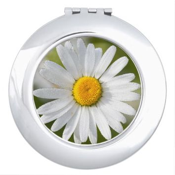 Beautiful Oxeye Daisy Compact Mirror
