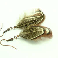 Natural Feather Earrings  Copper Brown feather by BessiesCreations