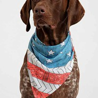 Bianca Green For DENY USA Pet Bandana - Urban Outfitters