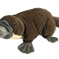 "Cuddlekin Platypus 12"" by Wild Republic"