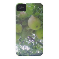 Photo Mobile Case Iphone 4 mate id iPhone 4 Cases