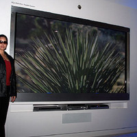 Panasonic 150-inch Plasma TV