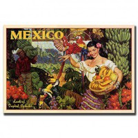 "Trademark Global Mexico, Traditional Canvas Art - 32"" x 24"" - V7066-C2432GG - Decor"