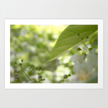 green moments  Art Print by VanessaGF