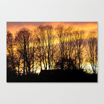 Brilliant Sunset  Orange Yellow Gold Pink Wall Accent Silhouette Fine Art Photography Wall Decor Northampton Nature Home Accent Gift