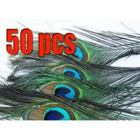 NEW 50 Natural Peacock Tail Feathers,about 26-30cm