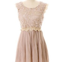 Carnation Lace Pleated Dress - Retro, Indie and Unique Fashion