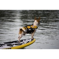 EzyDog Doggy Floatation Device in Yellow | Wayfair