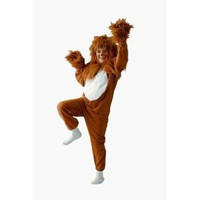 Childrens Lion Boys Halloween Costume