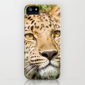LEOPARD LOVE iPhone & iPod Case by Catspaws | Society6