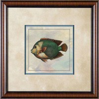 "Phoenix Galleries Tropical Fish 2 Framed Print - 21""x 21"" - HP760 - Decor"