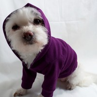 Dog and Cat Hoodies